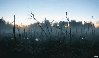 Жудкое озеро Шушмор