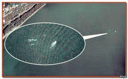 Лохнесское чудовище с карты Планета Земля Гугл. Новая сенсация. На фотографиях Гугл обнаружили Несси