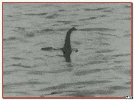 И снова Лохнесское чудовище попало в объектив. Гугл удалось сфотографировать объект очень напоминающий легендарное Несси
