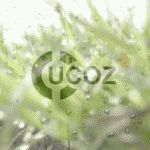 Простой способ заработка на сайтах от uCoz