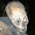 мумия пришельца