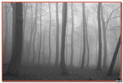 История Тонкого человека и жуткое кладбище и его тени практически не разделимы, так как одно дополняет другое. Хотя Тонкий человек и жуткое кладбище истории разные.