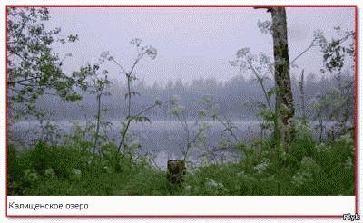 Калищенское озеро - мертвое озеро
