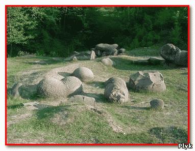 Растущие камни могут самостоятельно передвигаться и даже размножаться - трованты