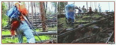 Подкаменная Тунгуска падение метеорита