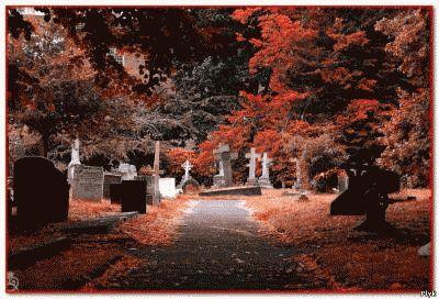 Что виной появления блуждающих могил?
