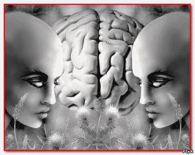 Возможно, эффект дежавю - это защитная реакция мозга