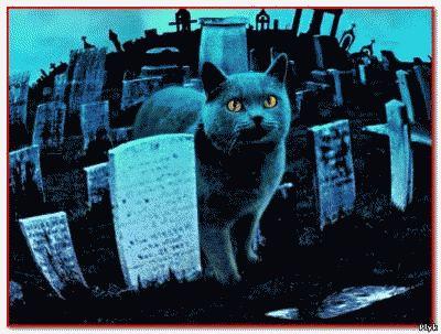 Мистические истории Кладбище домашних животных