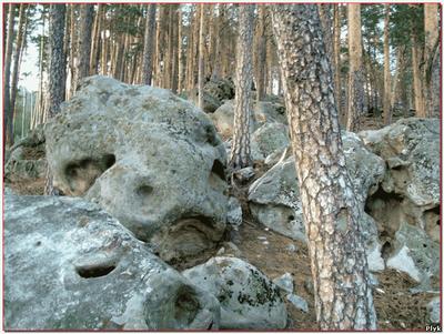 камни в Рачейском бору