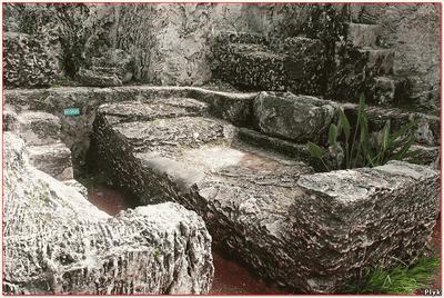 Элементы ансамбля кораллового замка