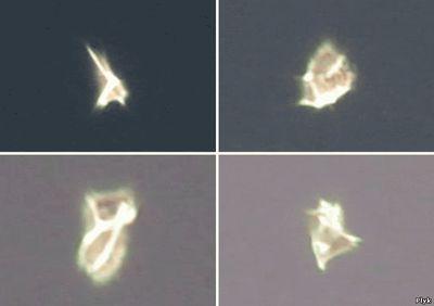 НЛО меняющее очертания