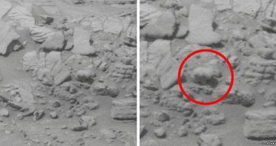 На фото с Марса медведь