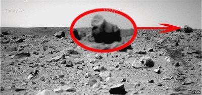 Обезьяна на Марсе