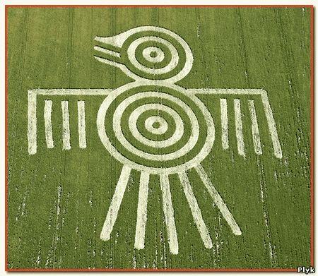 Последнее время круги на полях представляют из себя не схемы и непонятные чертежи ну и вполне доступные рисунки