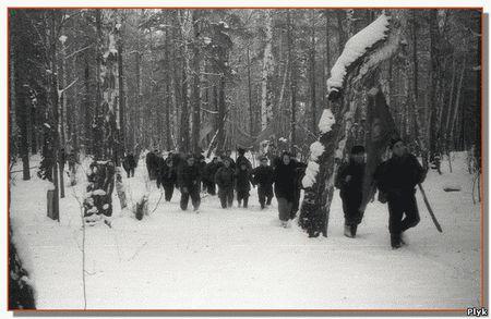 Гибель Дятловцев – как это было?