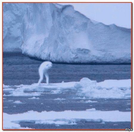 Нингены - гуманойды подводного мира в Антарктике из космоса
