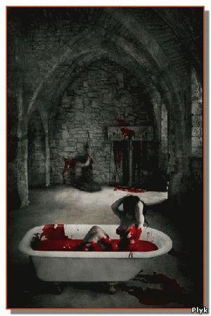 Еще со своего детства кровавая графиня Элизабет Батори очень сильно завидовала своим служанкам