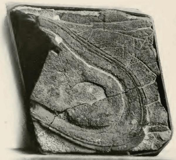 Запретная археология Подошва возрастом в 5 млн. лет