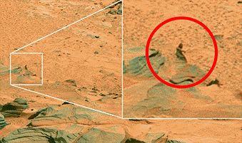 Загадочное фото с Марса сделанные марсаходом. Живые... выжившие марсиане или... ?