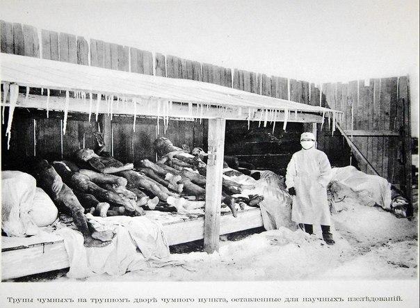 ужасные эксперименты Отряда 731